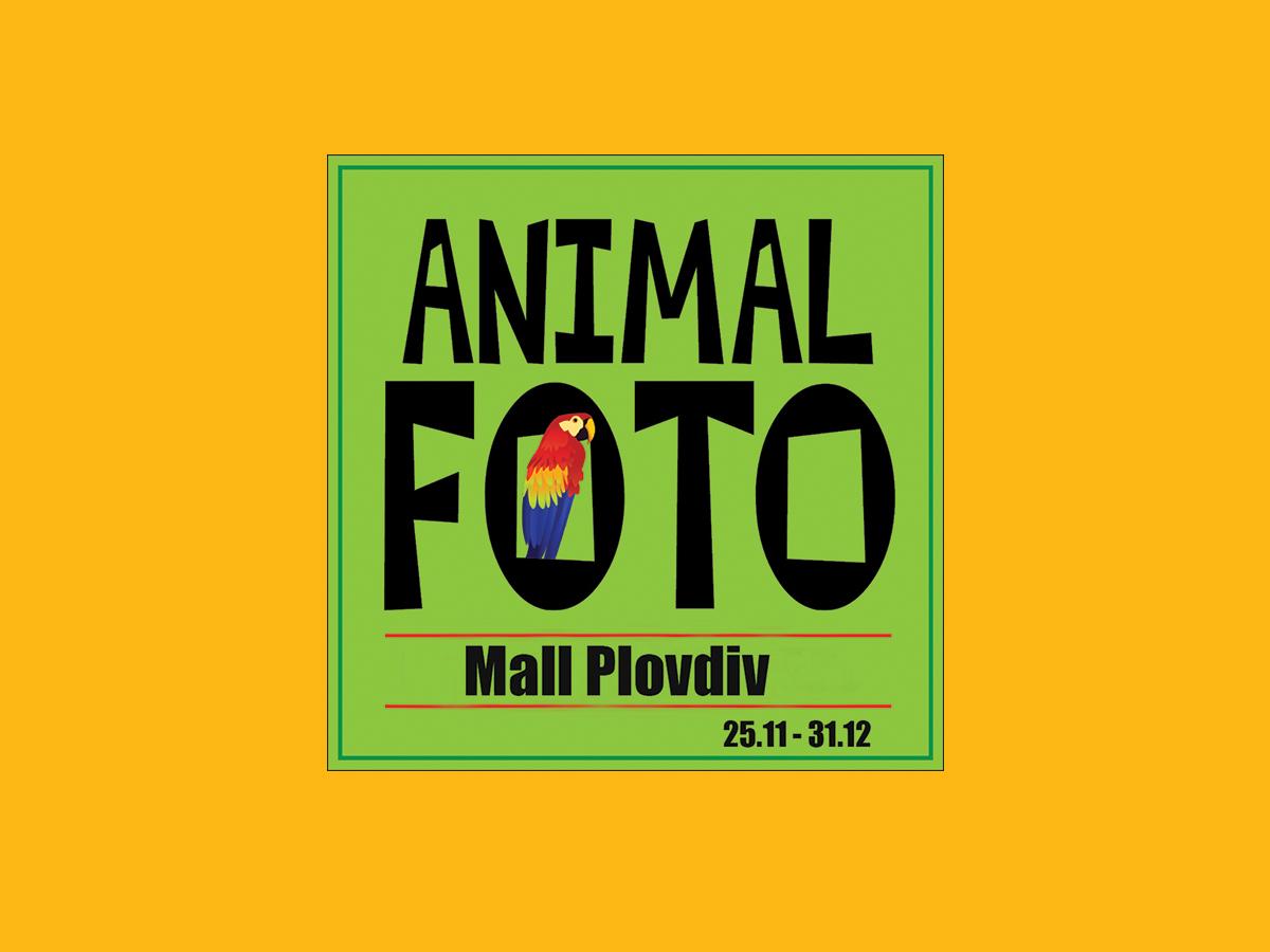 ANIMAL FOTO ще се постараят Коледният шопинг да бъде зареден с още повече веселие!