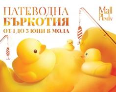 Патеводна бъркотия в Mall Plovdiv