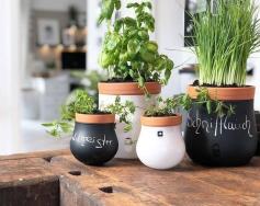 Лесни идеи за домашно градинарство от KREO