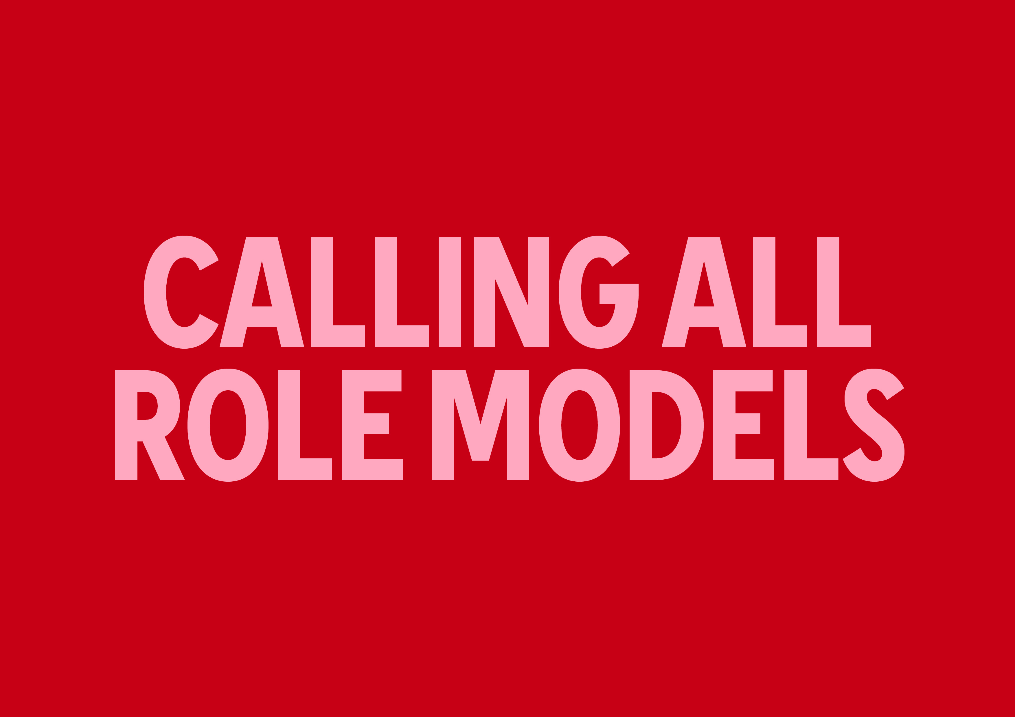 H&M Role Models