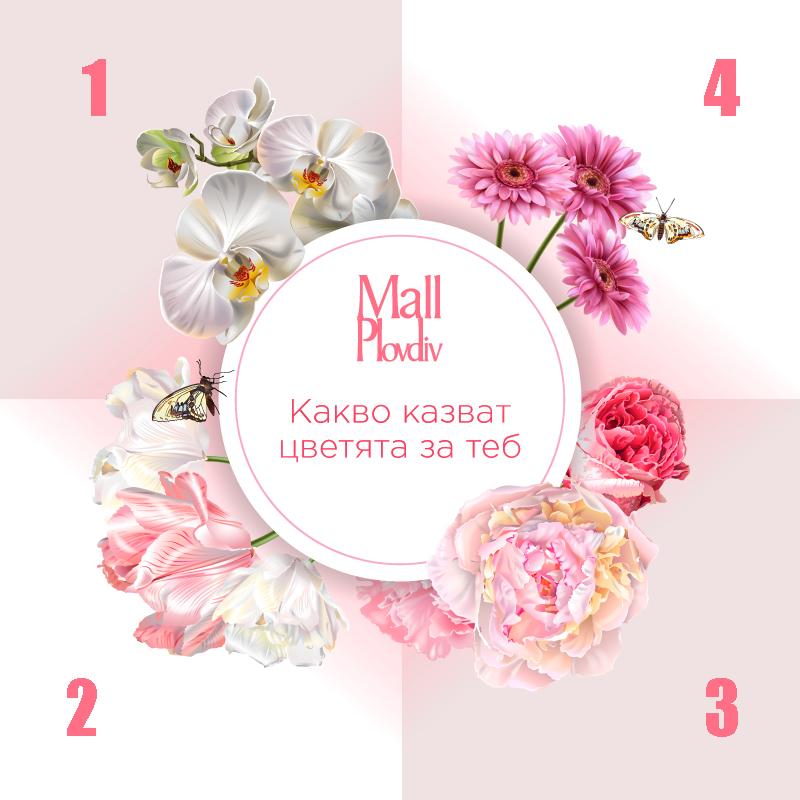 Езикът на цветята и какво казват за теб?